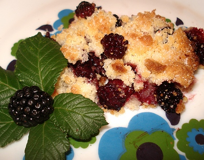 Crumble aux M�res sauvages -- 12/09/10