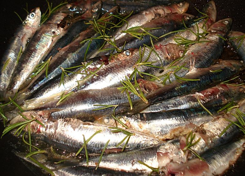 Sardines grill es au romarin - Cuisiner des filets de sardines fraiches ...